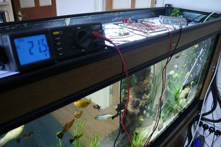 https://www.aquariumfans.nl/wp-content/uploads/2014/10/Aquarium-verlichting.jpg