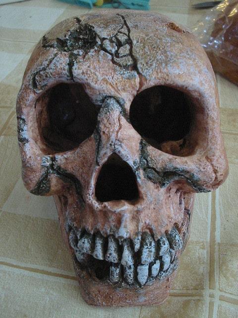 Aquarium decoratie schedel