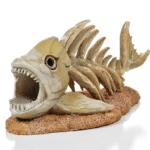 Liever levende vissen dan dode vissen, maar een dode Piranha als aquariumdecoratie kan geen kwaad