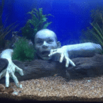 Zombie aquarium decoratie