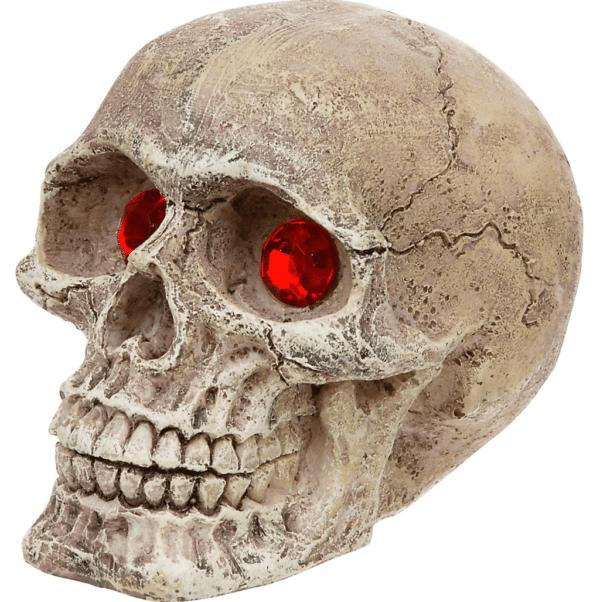 Fancy schedel voor in je aquarium. Waarom ook niet!
