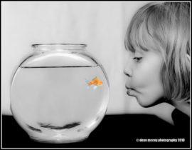 Wie heeft als kind nou geen vissenkom gehad?