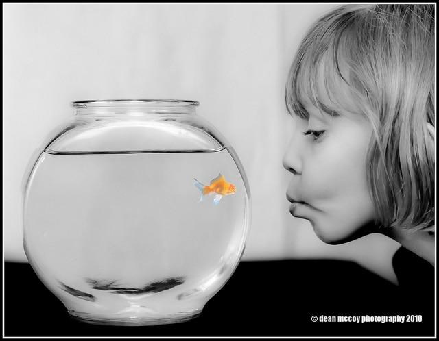Vissenkom met kind