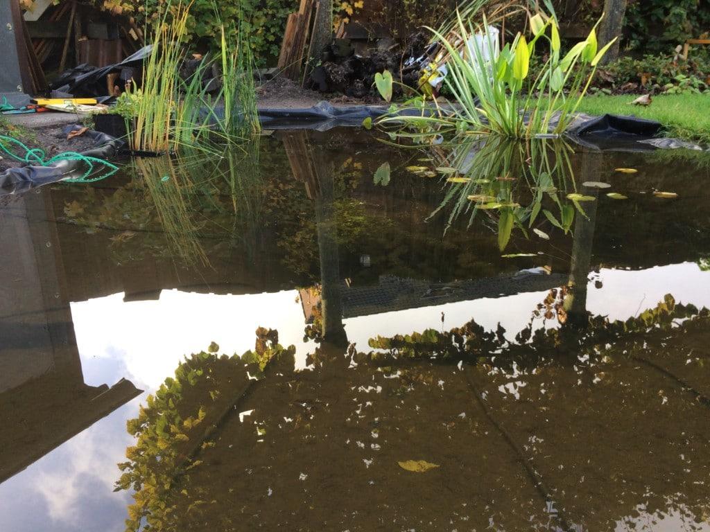 Wateroppervlak van de vijver.