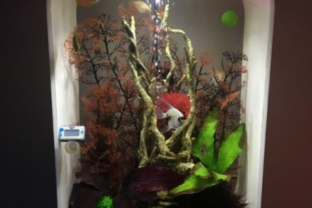 Biorb Life 45 Aquarium