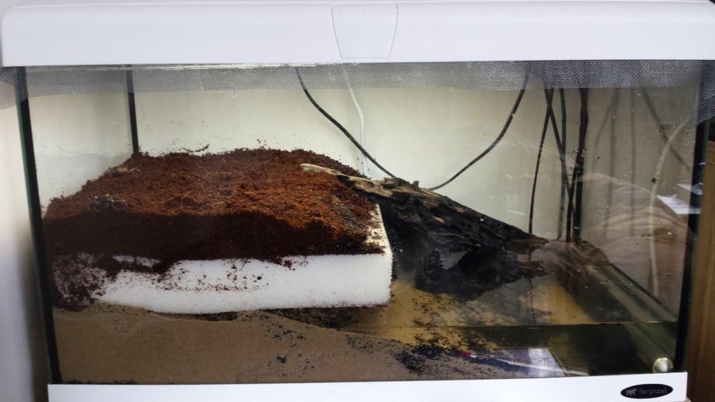 OREO, lijkt op het koekje.