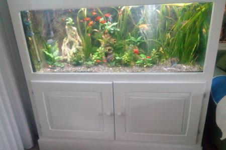 Rustgevend levendig aquarium