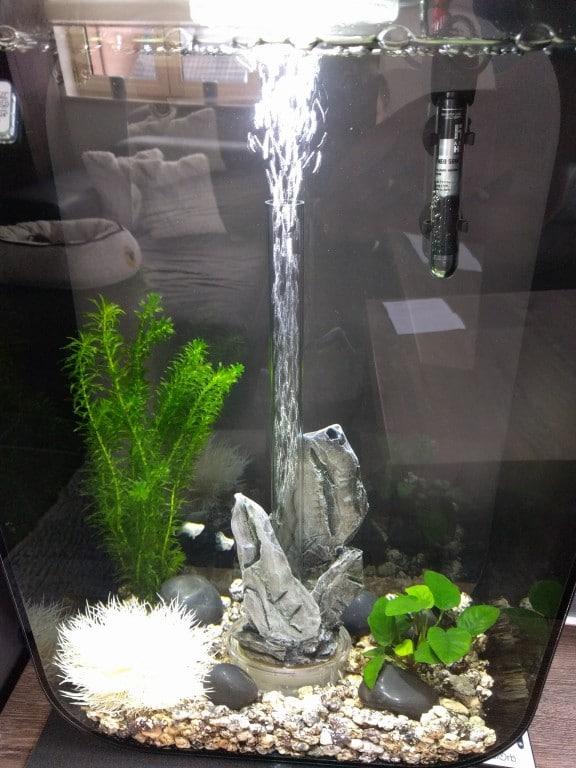 Mijn aquarium 2