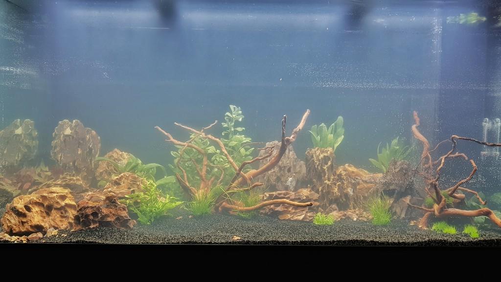 net gevulde aquarium