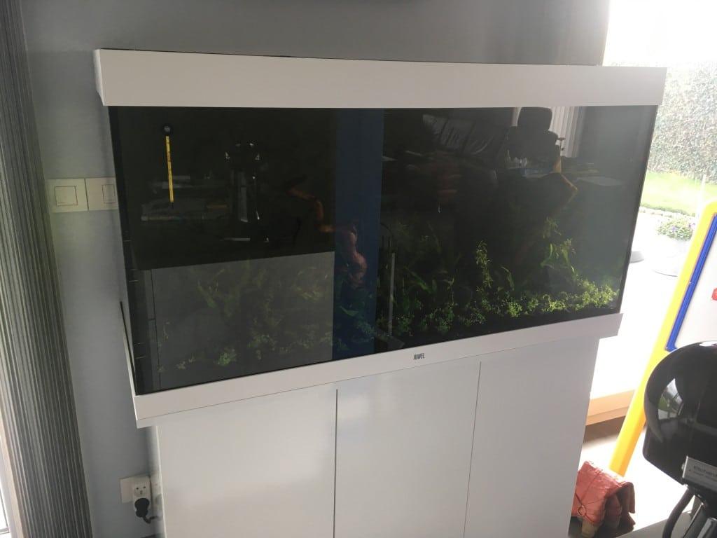 Nieuwe aquarium.