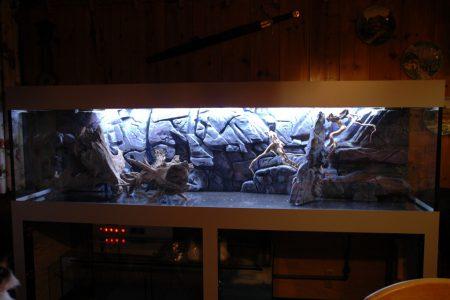 Na min. 48 uur is de epoxy goed uitgahard en kan de achterwand in het aquarium worden gemonteerd.